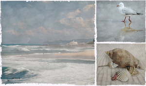 Beach Triptych 1 by Lindalees