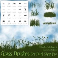 Grass Brushes for Paint Shop Pro by zememz