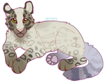where i'm going by servals