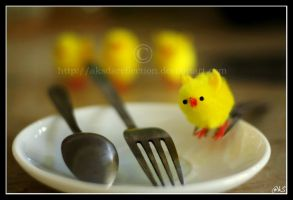 not suitable for vegetarians by ahmedwkhan