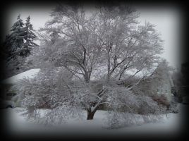 Tree of Ice by KBSL