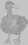 Its a duck by Hand-Banana