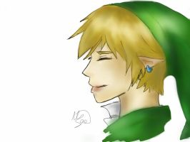 Link from The Legend Of Zelda by VictorySoup