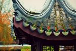 chinese garden - roofing tile by LucaHennig