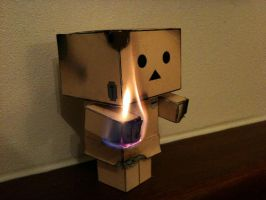 Danbo plays with FIRE by theaaronp