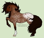 Bay Leopard Appy Mare by tolarie
