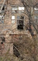 Armour Meat Packing Plant 4 by RonTheTurtleman