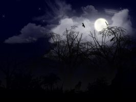 Spooky Night by operian