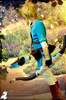 Link (Zelda: Breath Of The Wild) - Follow Me by Echolox