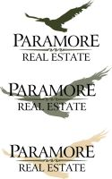Paramore Real Estate Concept 2 by ADMIRE-GD