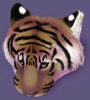 tiger realism practice? by xPine