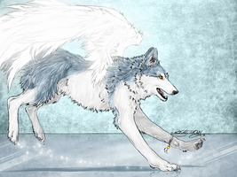 .Winged.Ice.Wolf. by WhiteSpiritWolf