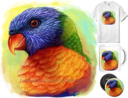 Rainbow lorikeet by emmil