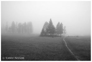 Morning at the Yellowstone by ynissim