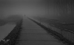 From out of the mist... by Brandzai