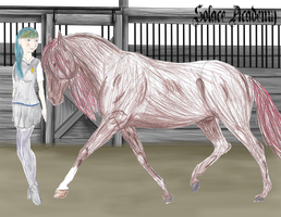 Solace Academy - Emma Wilkinson by ForeverFreeStables