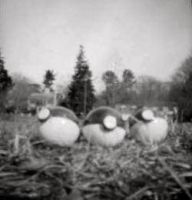 Pokemon in the 1800s (pinhole picture) by Jacobi-biscuit
