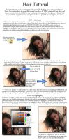Hair Tutorial by zorn981