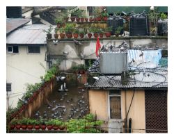 Life on the Roofs by Kanyombya