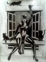 cat woman by sidneydesenhus