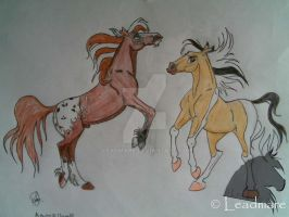 Apache and Libertad by Leadmare