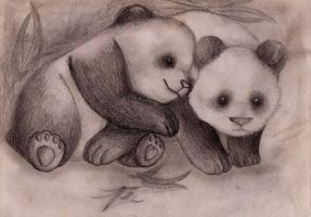 Baby Pandas. by McMHp7