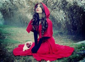 Little Red Riding Hood 1 by 23619