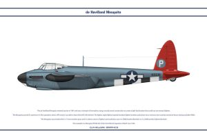 Mosquito USAAF 1 by WS-Clave