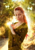magic autumn by pono4evnaya