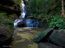 The Flowing Empress by FireflyPhotosAust