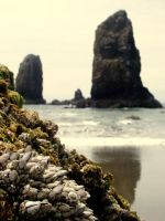 Haystack Rock, Cannon Beach Or by StephaniTheArtist