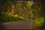 Down The Road by aFeinPhoto-com