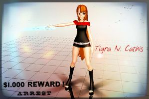 Tigra N. Cathis by lilliethecat