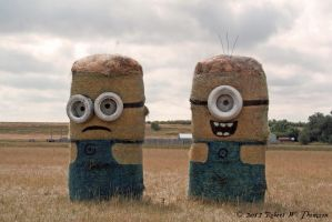 Despic-Hay-Bale Me Minions by hunter1828