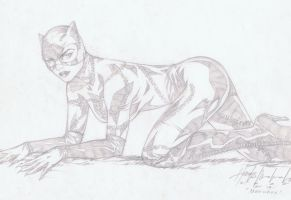 Catwoman sketch by wrathofkhan