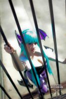 Like a Bird in a Cage by Lily-in-Leather