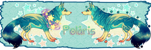 Polaris - SOLD by beruruSTAR