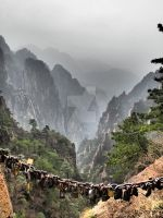 HuangShan Yellow Mountain by phantastes