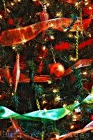 Fill of Christmas. by ButterflyImage