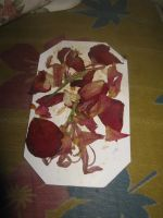 Dark Rose Pressed Flowers by AbstractWater