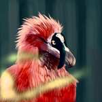 Bearded Vulture by AsimpleZombie