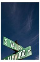 S Valley by wyslet