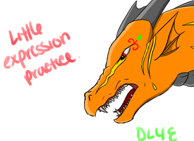 Expression Practice by DragonLover4Ever