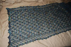 Lace shawl by rjccj
