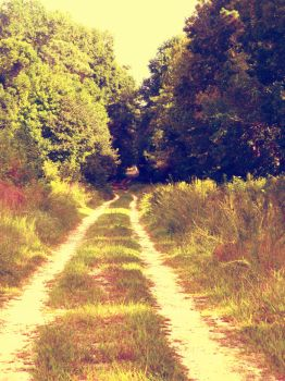 Pathway by cail-couture