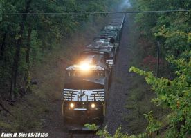NS 8030 8029 and NS Southern Heritage 8099 NS 749 by EternalFlame1891