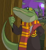 Welcome to Crocwarts, Harry... by Duckboy