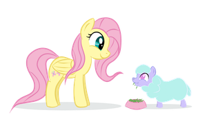 Fluttershy and a tiny Ewe by Kasun05