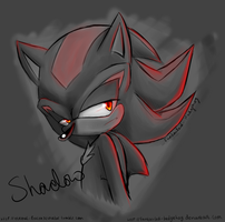 Shadow Doodle by Fantailed-Hedgehog