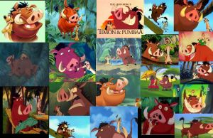 Timon And Pumbaa by colodgeartist